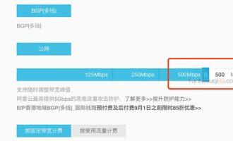 阿里云弹性公网IP带宽最大值是多少Mbps?